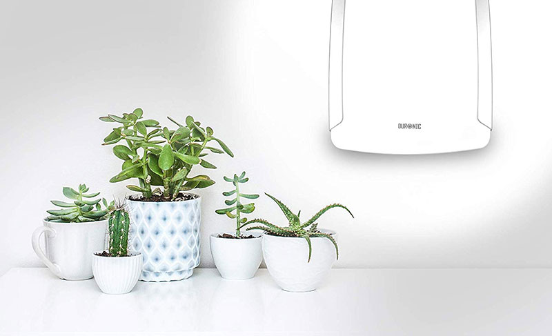 Lampe de luminothérapie à utiliser pour vos plantes